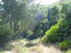 Quinta de S. Paulo - Setúbal