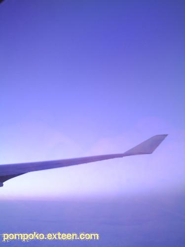 wind beneath my wing
