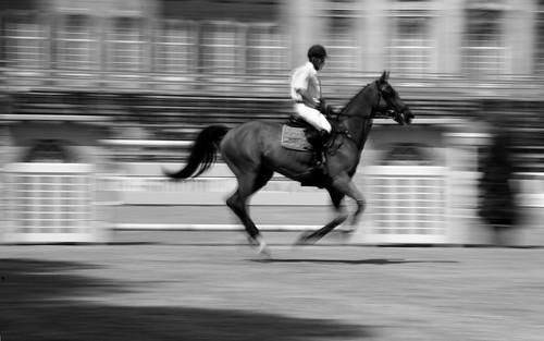 Authentique photo d'equitation pour mon pere :)