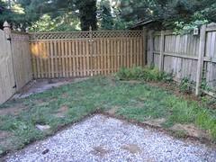 backyard aftr2