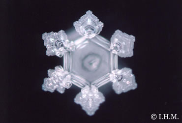 Amazon Water Crystal
