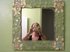 Turtle Mirror Frame