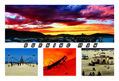 Burningman Postcard