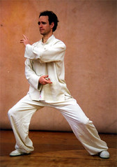 Tai Chi shoulder strike