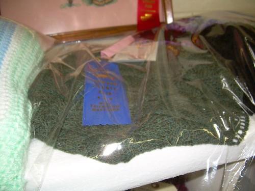Jolene's prize winning shawl