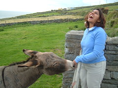A Donkey nibbles Monica's Jewellery