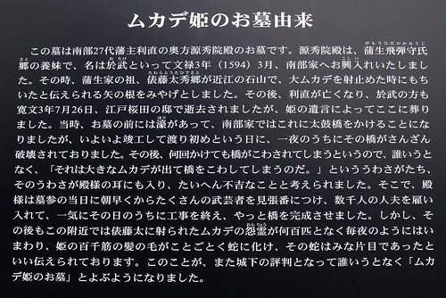 Princess Centipede Sign - Japanese