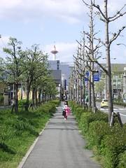 Camino en Kyoto