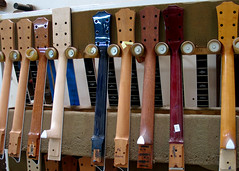 Taylor Guitar Necks
