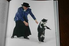 dancingwithcats-004