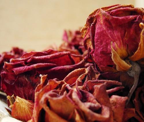 Rosas, a secas