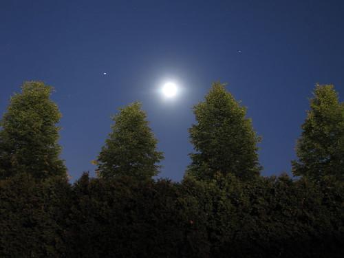 Moon 3262