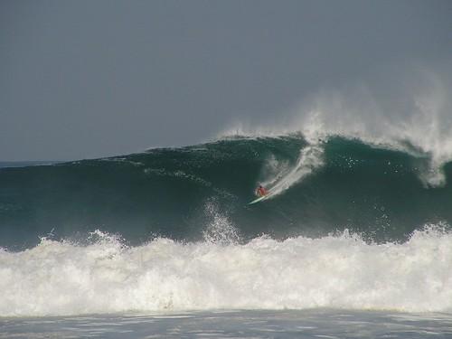 169152977 9a565b7834 Centroamérica  Marketing Digital Surfing Agencia