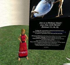 Discovered Berkman Island in Second Life!