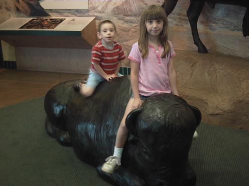 Riding the Buffallo