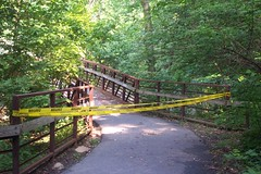 Sligo Creek Bridge Upstream of Hospital
