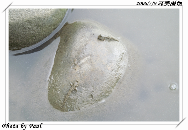 20060709-011