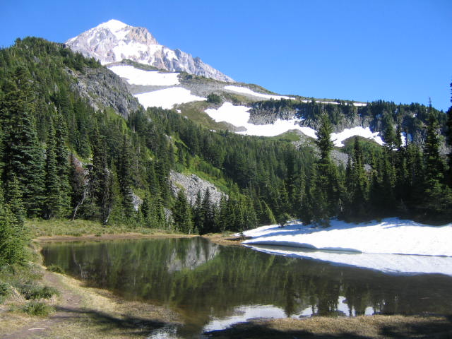 Pond on McNeil Point Trail