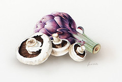 Artichoke and mushrooms by Heidi Willis