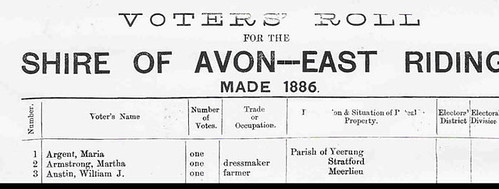 AvonRoll 1886