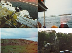farne islands montage