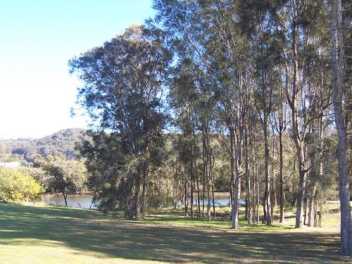 Park beside Narara Creek at Henry Kendall Bridge West Gosford