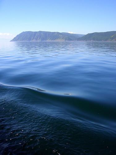 Волны \ Waves