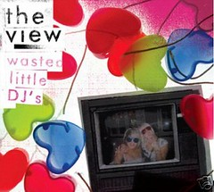 The View - Wasted Little DJs