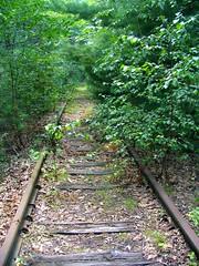 Rail Trail?