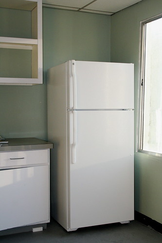 fridge and painted wall