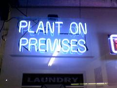 Plant On Premises