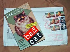 bad cats