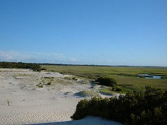 Where the Marsh Meets the Dunes, Cumberland Island