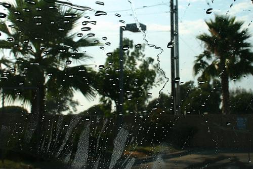 Car Wash WIndshield