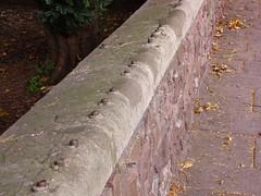 restos de antigua verja victoriana