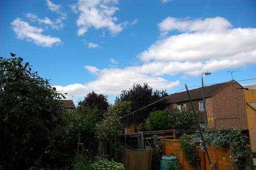Blue Skies at Home
