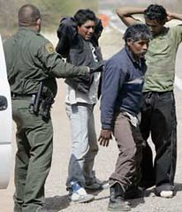 Border Arrests