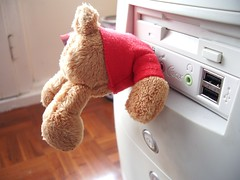 Teddy Head USB
