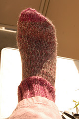 Knitted pink sock