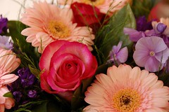 flowers. [sent to the office.]
