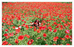 me in a sea of poppies