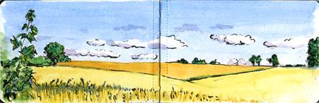wheatfieldssmall