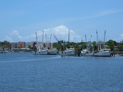 The Shrimp Fleet in Fernandina Beach, FL