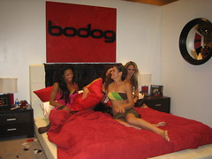Bodog Pillow Fights