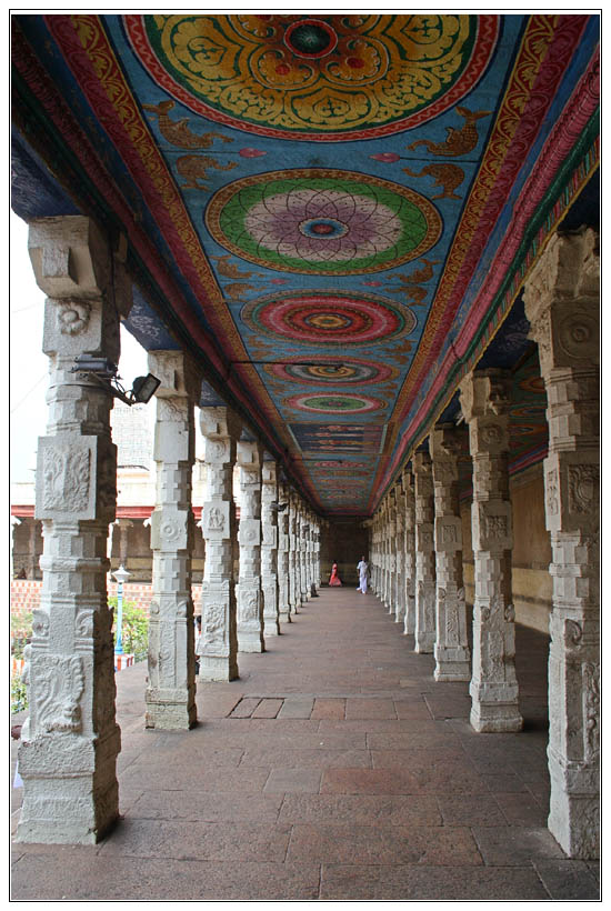Madurai : Meenakshi Kovil Ceilling #2