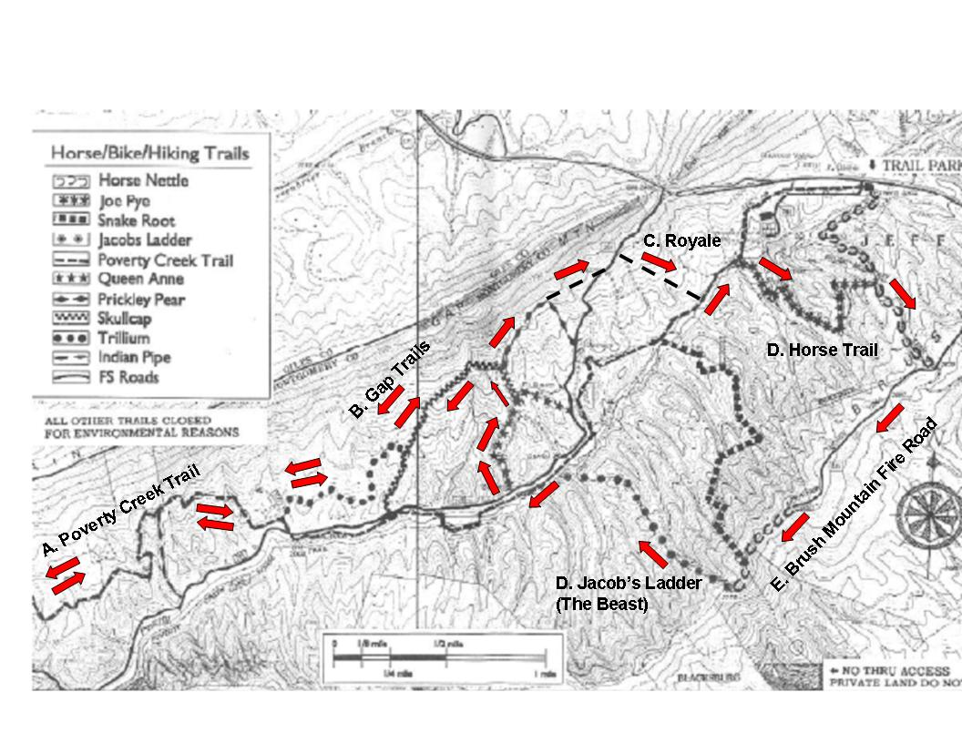 Rowdy dawg course map