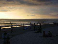 Beach & bogans