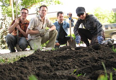 Photo of Guerrilla Gardeners