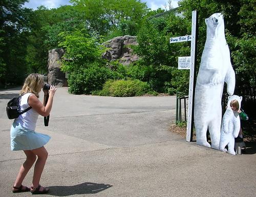 Zoo XII