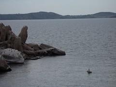 Saa Nane Island, Mwanza, TZ